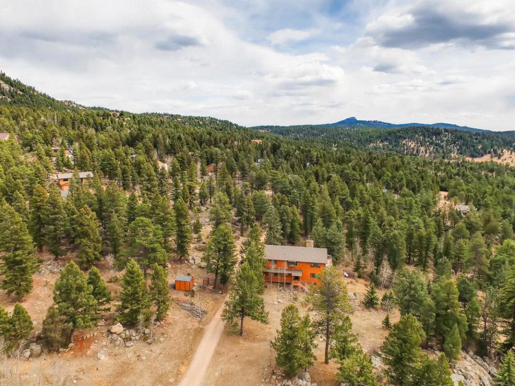 conifer real estate